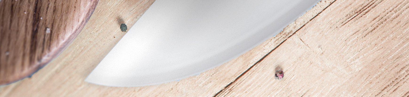 cuchillos-filetera-arcos